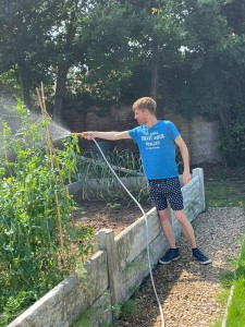 Growing our own at Goldcrest House